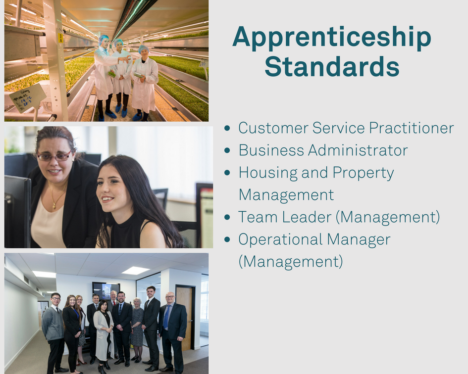 ist of the types of Apprenticeship Standards that Catch22 offers